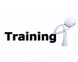 Why Traditional Training Solutions don't work Anymore- Part 2