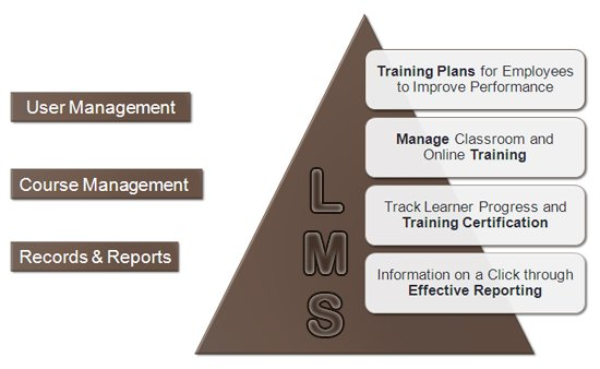 What Does an LMS do?
