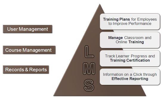 LMS Training Functions