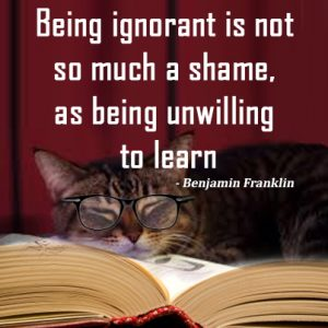 Being ignorant is not so much a shame, as being unwilling to learn