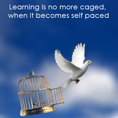 Learning Becomes Flexible with eLearning