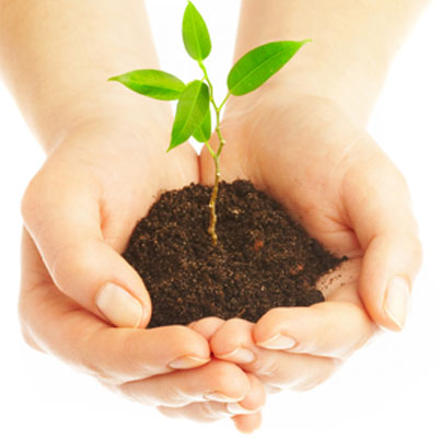 the benefits of sustainable development essay
