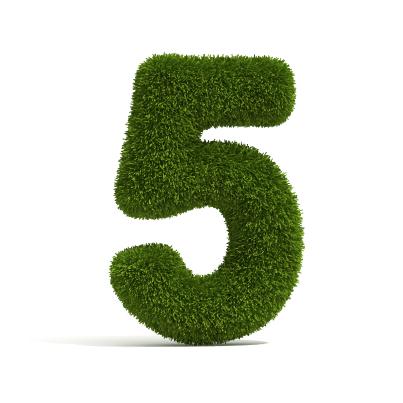 5 Factors that Make mLearning Irresistible