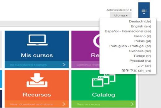 Multi-language Interface