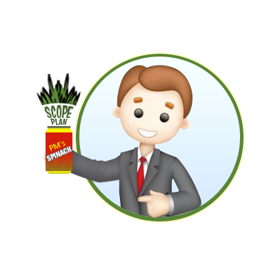 Hey E-learning Project Manager – What's Your Spinach?