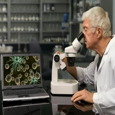 Evidence Based Medicine (EBM) Training Via E-learning