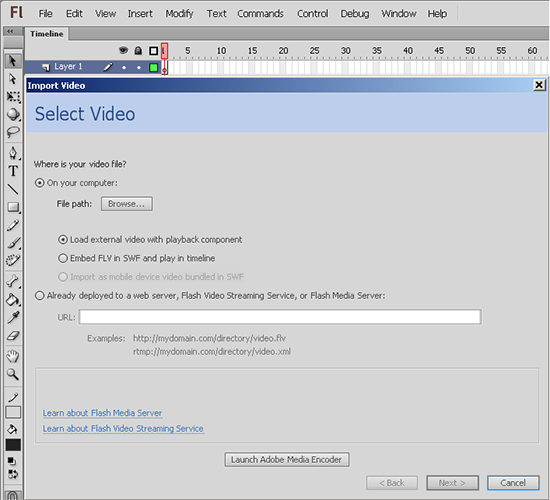 Selected Flash Document