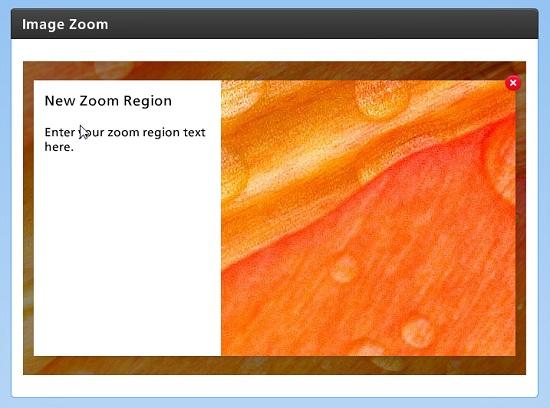 Image Zoom