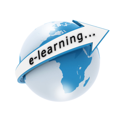 Enabling Flash Global Settings for an E-learning course