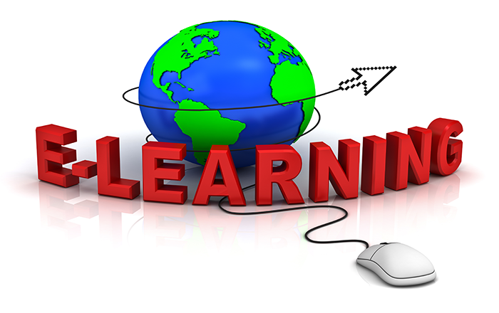 When Do You Need Customized E-learning?