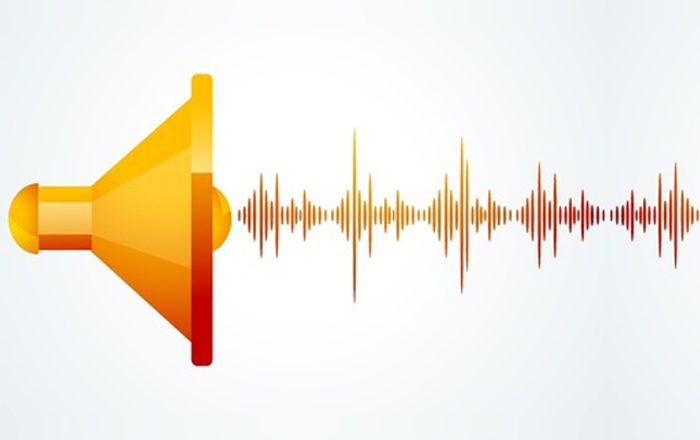 How to Control Audio in Articulate Storyline?
