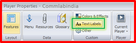 In Custom, click Text Labels