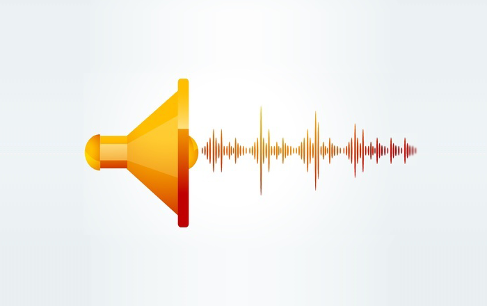 Importance of the Audio Component in E-learning