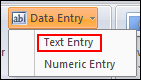 Select Text Entry filed