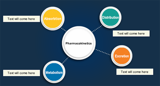 Product Pharmacokinetics
