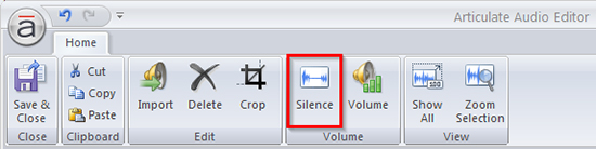 Silence Option in Audio Editor