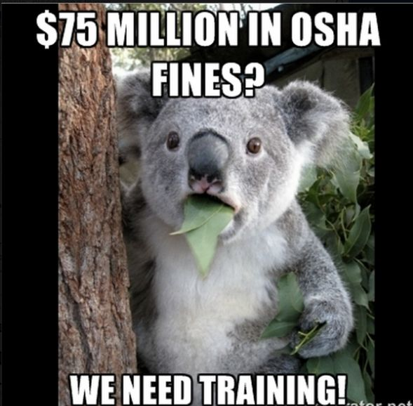 Memes to Promote Training Programs