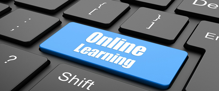 The Pros and Cons of E-learning [Infographic]