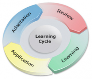 Understanding Learning Cycle to Design Effective E-Learning Courses