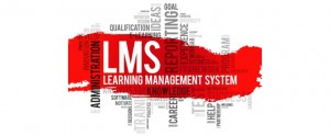 5 Best Practices of Using an LMS for Training Delivery