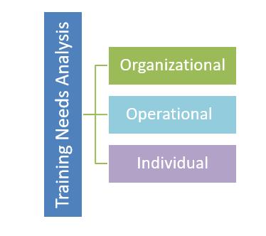 3 Levels of TNA