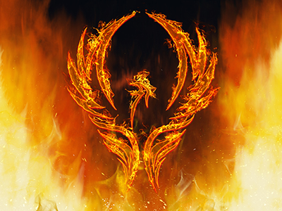 VILT has emerged like a phoenix from the embers of corporate training