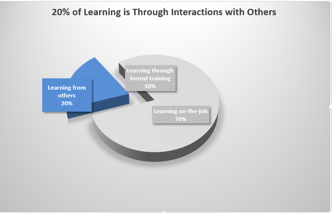 20% of the Learning Model