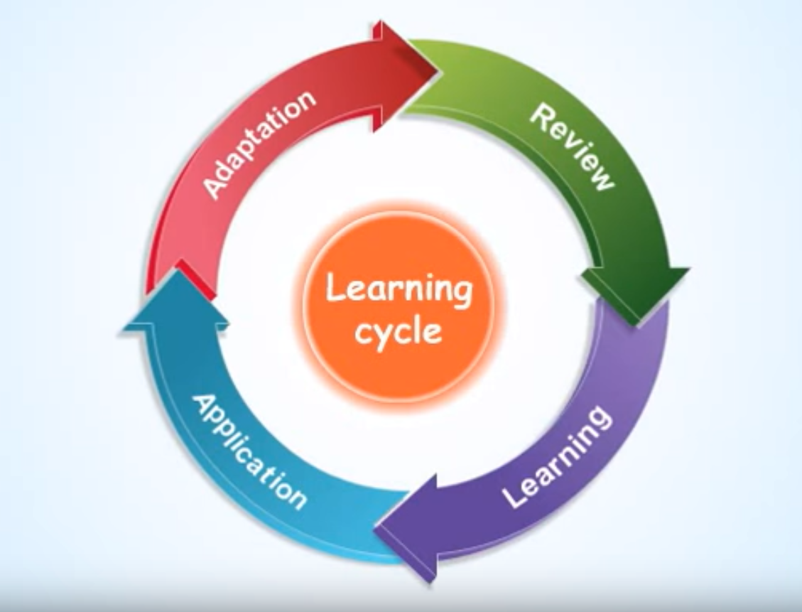 The 4 Stages of the Learning Cycle
