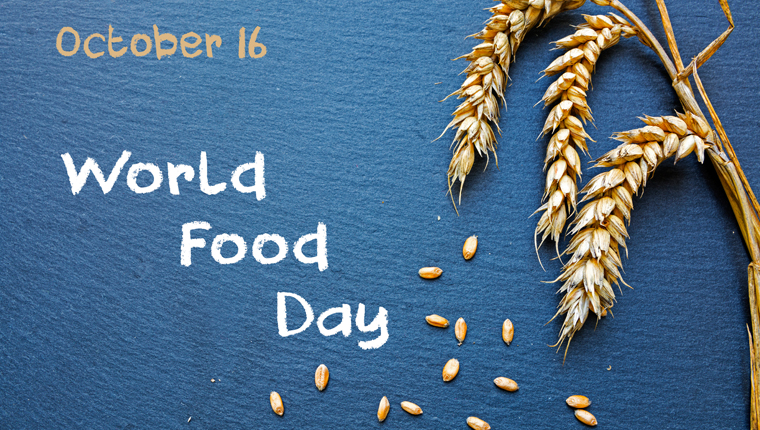 An Overview of World Food Day