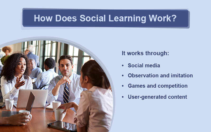 Decoding Social Learning: How Collaboration Works in the Workplace